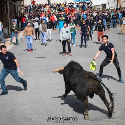 encierros-toro-del-cajon-mario-santos