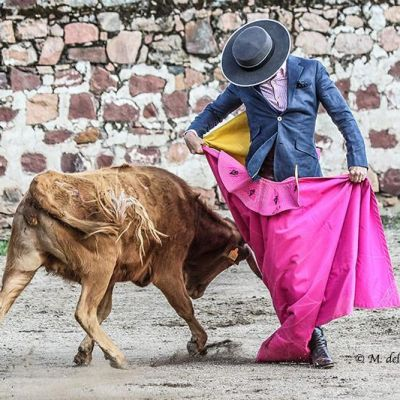 mdelmoral-toros-tentadero-euro-tauro-lujan